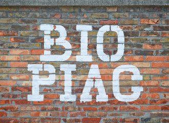 BioRózsa az Újpesti Biopiacon