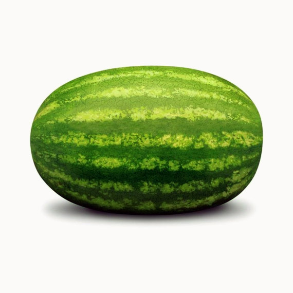 BioRózsa: görögdinnye - Rózsa Imre biogazda